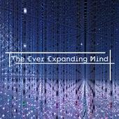 The Ever Expanding Mind de Zen Music Garden