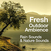 Fresh Outdoor Ambience by Rain Sounds