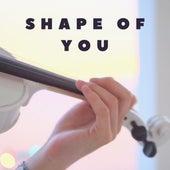 Shape of You by ItsAMoney