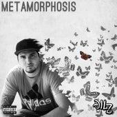 Metamorphosis by Dilz
