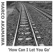 How Can I Let You Go by Marco Akamawa