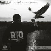 Freier Fall by Rio