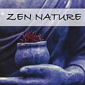 Zen Nature de Nature Sounds (1)