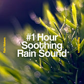 #1 Hour Soothing Rain Sound de Rainmakers
