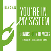 You're in My System (Dennis Quin Remixes) de Kerri Chandler
