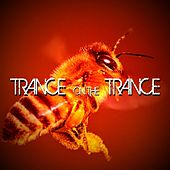 Trance On The Trance de Various Artists