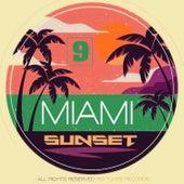 Miami Sunset, Vol. 9 von Various