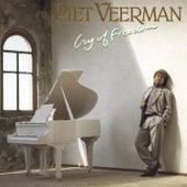 Cry of Freedom de Piet Veerman