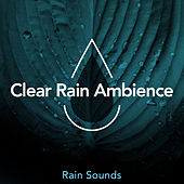 Clear Rain Ambience by Rain Sounds