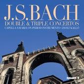 J. S. Bach: Double & Triple Concertos by Zsolt Kalló