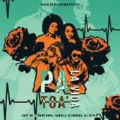 Pa Toa La Vida by Jose Mc