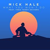 What You Won't Do (feat. Theo Teddy Shivers) de Mick Hale