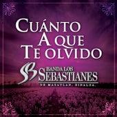Cuánto A Que Te Olvido de Banda Los Sebastianes
