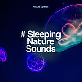 # Sleeping Nature Sounds de Nature Sounds (1)