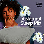 A Natural Sleep Mix de Nature Sounds Artists