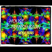 House Transfusion by Nora Berg