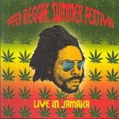 1993 Reggae Summer Festival Live In Jamaica de Various Artists