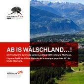 Ab is Wälschland...! (Instrumental) de Wälschland-Express