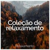 Coleção de relaxamento de Relaxamento