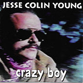 Crazy Boy by Jesse Colin Young