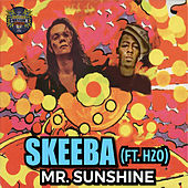 Mr. Sunshine von Skeeba