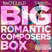 Big Romantic Composers Box von Various Artists