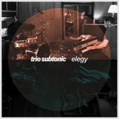 Elegy by Trio Subtonic