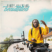 Beautifilled by Randy Valentine