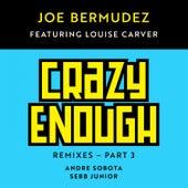 Crazy Enough: Remixes, Pt. 3 (feat. Louise Carver) de Joe Bermudez