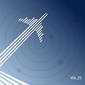 Space Airlines, Vol. 25 de Various Artists