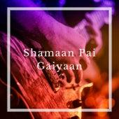 Shamaan Pai Gaiyaan von Folk Studios