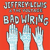 Exactly What Nobody Wanted by Jeffrey Lewis