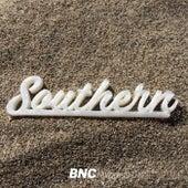 Southern Compilation Vol. 2 de Various Artists