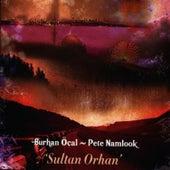 Sultan Orhan by Burhan Ocal
