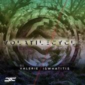 Volatile Cycle - Single de Volatile Cycle