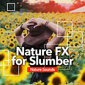 Nature FX for Slumber de Nature Sounds (1)