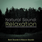 Natural Sound: Relaxation by Rain Sounds