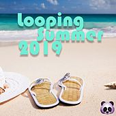 Looping Summer 2019 de Various Artists