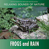 Frogs and Rain: Relaxing Sounds of Nature de Healing Sounds for Deep Sleep and Relaxation