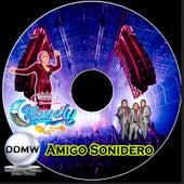 Amigo Sonidero de Nayeli Miel Y Cumbia