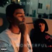 Mr.Wonderful by Demi