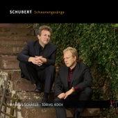Schubert: Schwanengesänge von Markus Schäfer