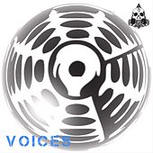 Voices by Gong