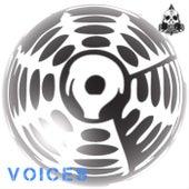 Voices de Gong