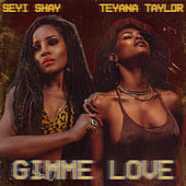 Gimme Love (Remix) de Seyi Shay