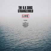 Stranglehold (Live) von U.K. Subs