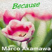 Because (Extended Version) by Marco Akamawa