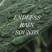 Endless Rain Sounds de Rain Sounds (2)
