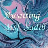 Awaiting by Msf Sadib
