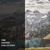 The Nature Collection by Nature Sounds (1)